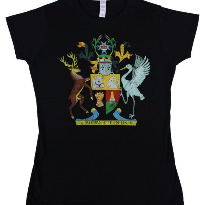 c51aec69a2a4 Flood Relief 2011 Black Womens Tshirt SALE. Foo Fighters Flood Relief 2011  Black Womens Tshirt. $35 $7.50
